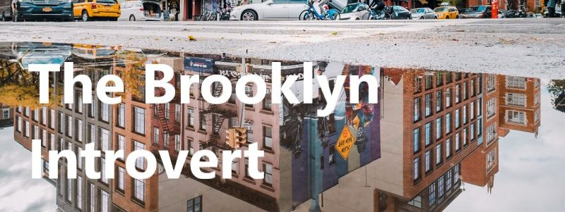 The Brooklyn Introvert